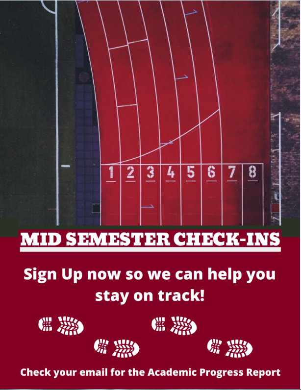 MidSemester Check-IN
