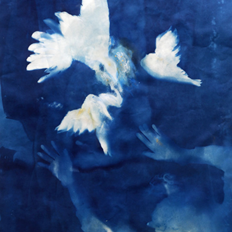 Taking Flight by Ann Holsberry, cyanotype, 2014