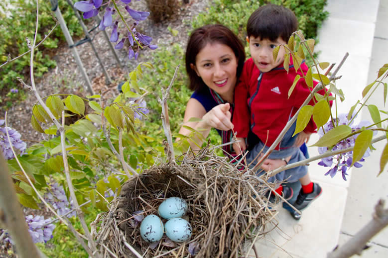 Young woman and boy looking at a birds nest