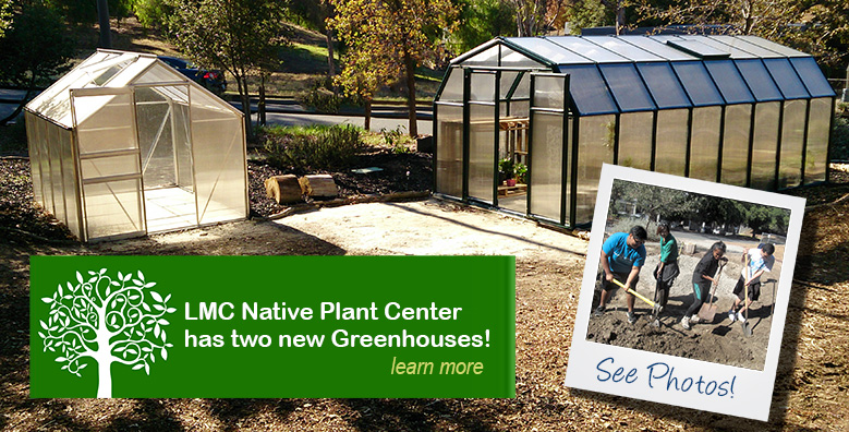 Learn about our greenhouses